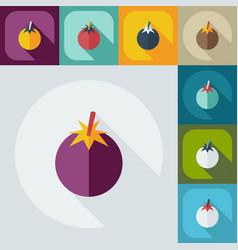 Flat modern design with shadow icons tomato vector