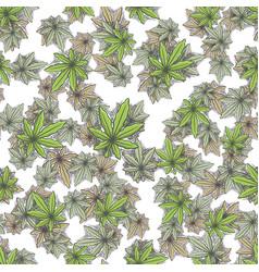 Seamless texture marijuana six vector