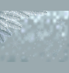 snow background with fir branch and sparkles vector image