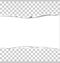 torn strip from the middle of a transparent sheet vector image