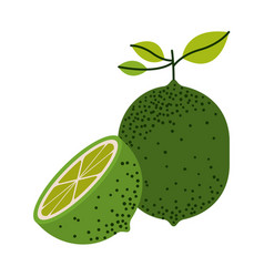 white background with one lemon fruit and half vector image