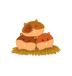 Cute cartoon hamster characters sleeping funny vector