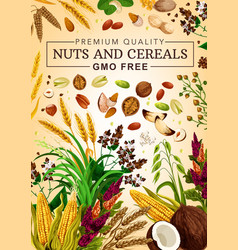 Gmo free cereal grains and nuts vector