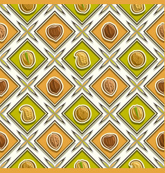 nut seamless pattern vector image