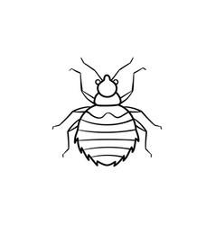 spider hand drawn sketch icon vector image