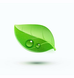 green environment concept icon vector image vector image