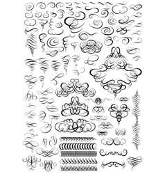 Calligraphic elements for design Big set vector image