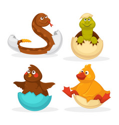 Baby animals hatch eggs or cartoon pets hatching vector