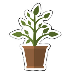 Cartoon pot plant garden image vector