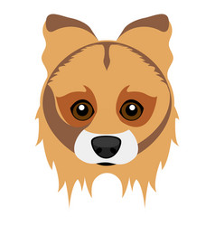 Cute collie dog avatar vector