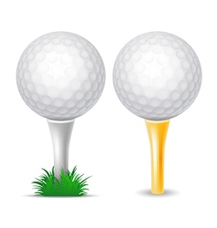 golf balls vector image