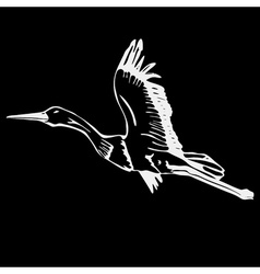 Hand-drawn pencil graphics bird stork swan duck vector