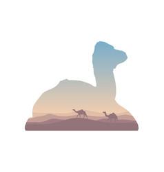 Silhouette of inside camel on the desert landscape vector