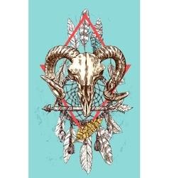 animal skull vector image