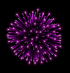 Beautiful pink firework bright salute isolated on vector