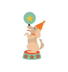 Cute dog standing on stage with ball funny animal vector