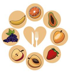 food healthy fruits nutrition image vector image
