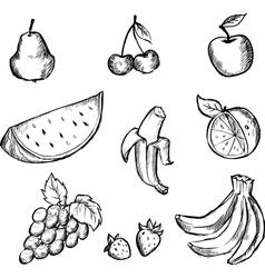 Sketch of fruits icon set vector image
