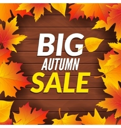 Big autumn sale design template poster Fall vector