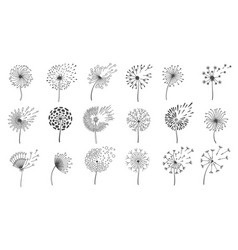 blowing dandelion seeds silhouettes fluffy vector image