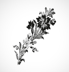 Branch with flowers on the diagonal vintage isolat vector image