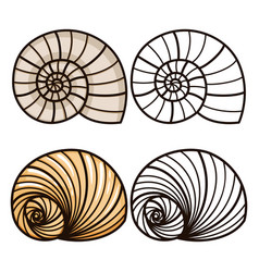 Cartoon and outline sea shells vector