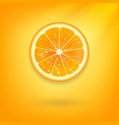 Fresh orange on orange background vector
