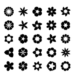 set flat icon flower vector image