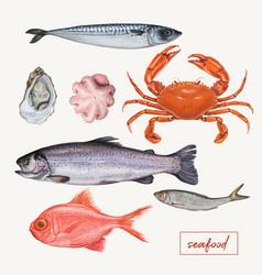 set of seafood hand drawn vector image