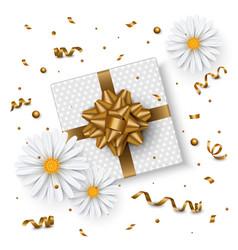 birthday background chamomile flower gift box vector image