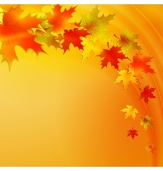 Autumn background with leaves nature vector image
