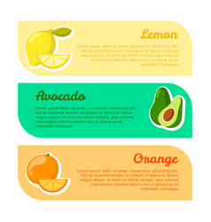 cards with space for your text fruits benefits vector image