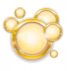 gold circle frames vector image