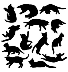 Set of kitten vector image
