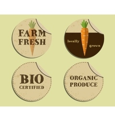 stylish farm fresh label and sticker template vector image