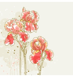 Background with three red iris flowers vector image