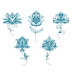Blue persian flowers in paisley style vector image