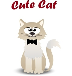 cute cat with tie vector image