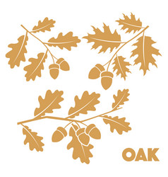 Oak branch set vector