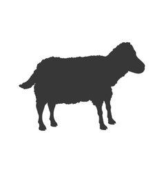 Sheep animal farm pet character icon vector