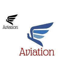 Aviation blue abstract icon or emblem vector image