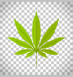 marijuana leaf on transparent background vector image