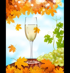 sparkling wine background vector image vector image