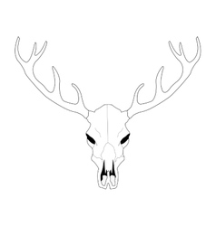 Deer skull line art vector image