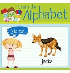 Flashcard letter J is for jackal vector