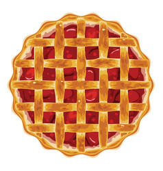 Homemade fruit and berry pie vector