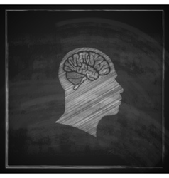 Human head with brain on blackboard background vector