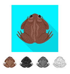 Isolated object toad and biology logo set of vector