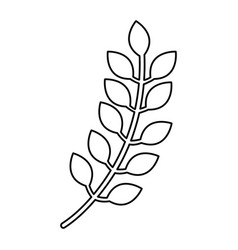 leaf plant decorative icon vector image