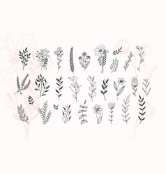 Minimalistic flower graphic sketch drawing trendy vector